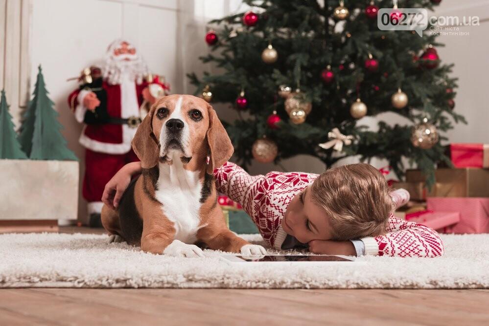 Что ждет людей в год Собаки. Советы астрологов, фото-1