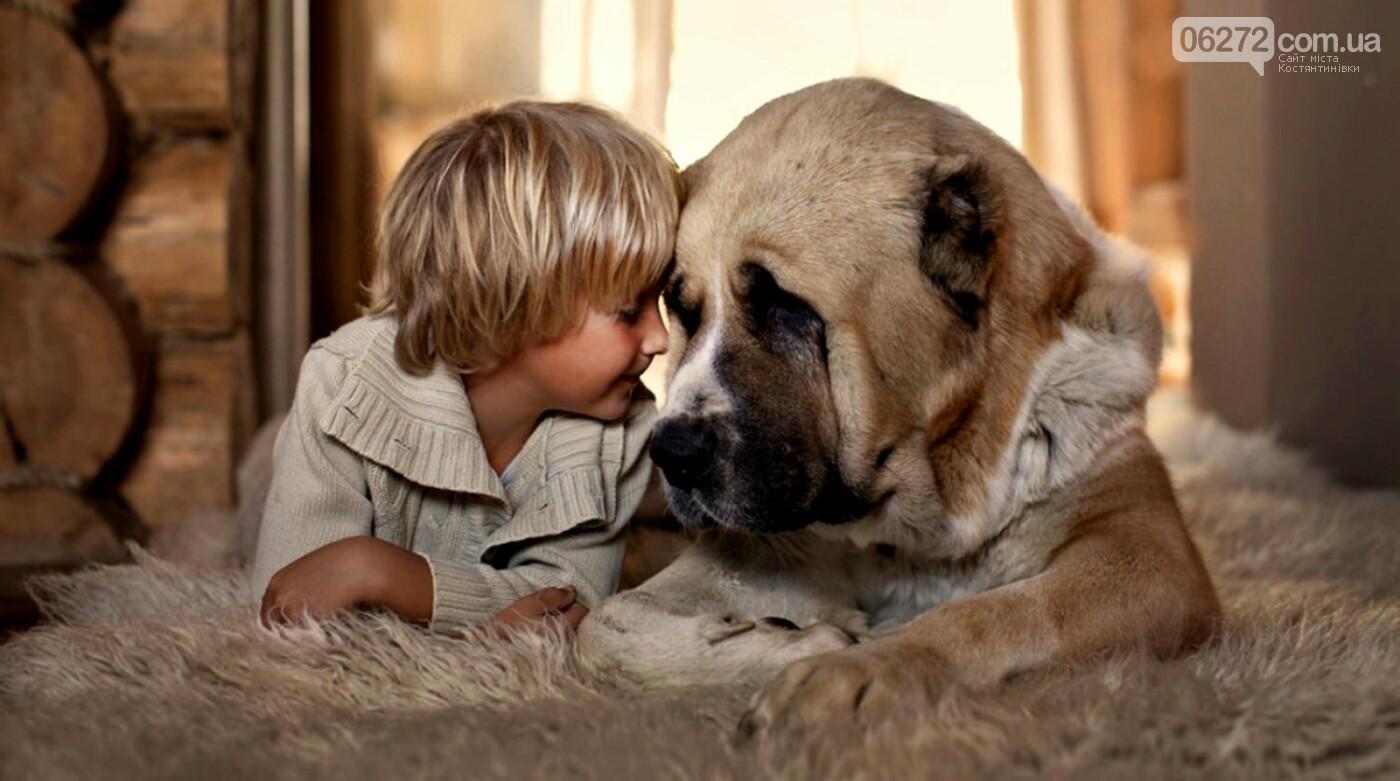 Что ждет людей в год Собаки. Советы астрологов, фото-2