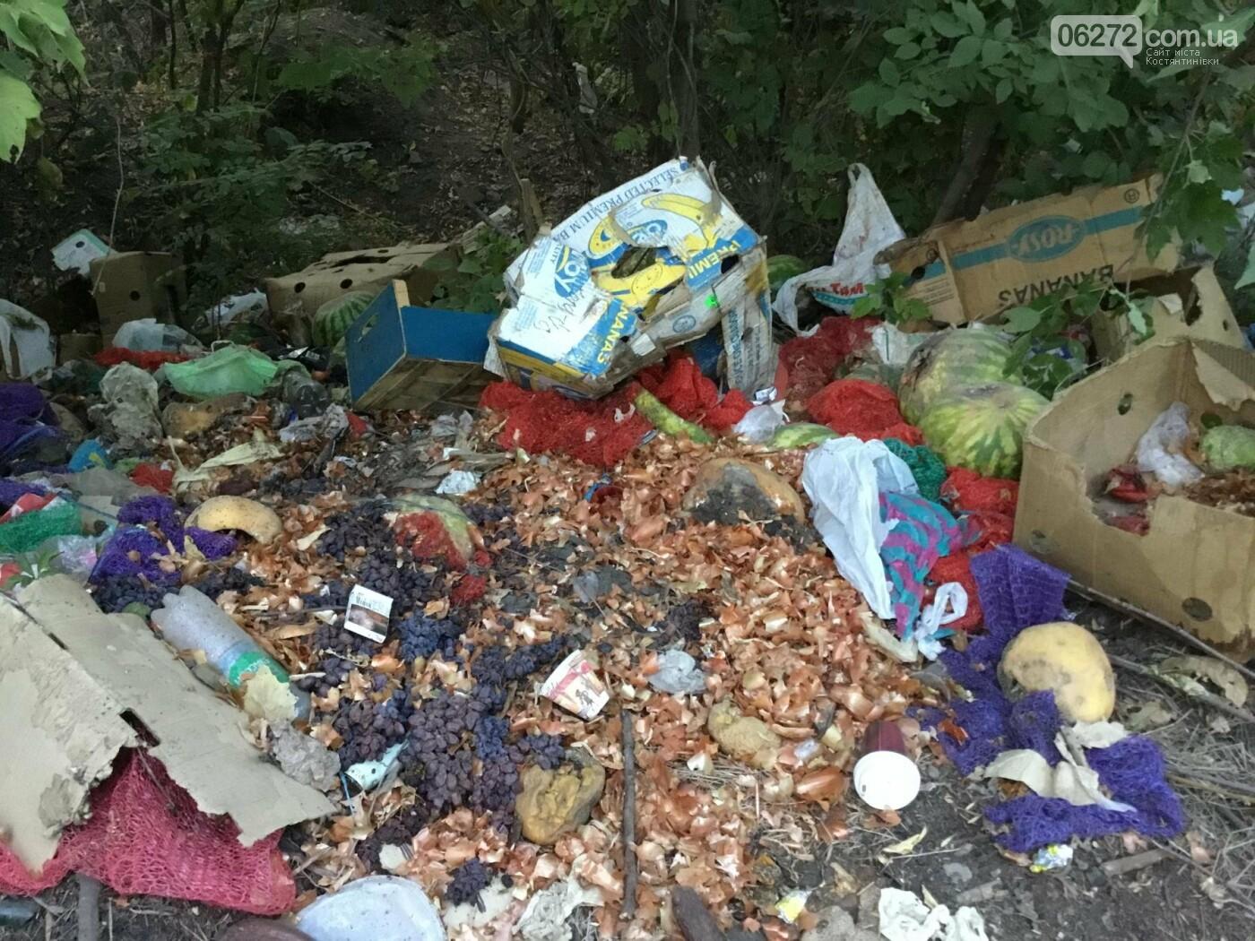 Как константиновцы экономят на вывозе мусора, фото-2