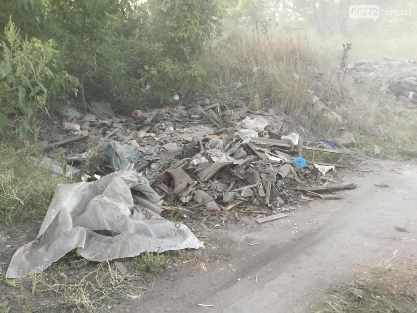 Как константиновцы экономят на вывозе мусора, фото-1