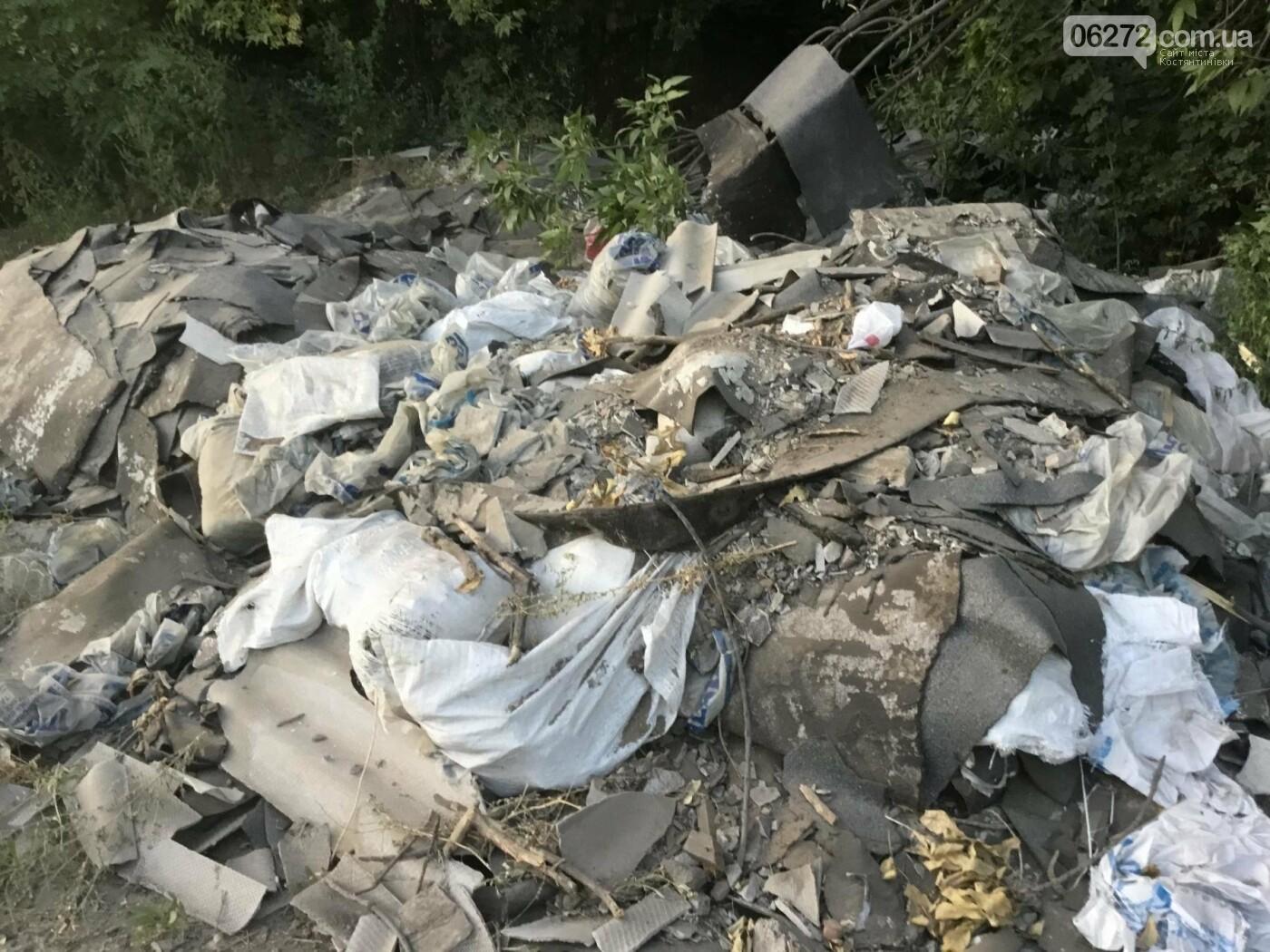 Как константиновцы экономят на вывозе мусора, фото-3