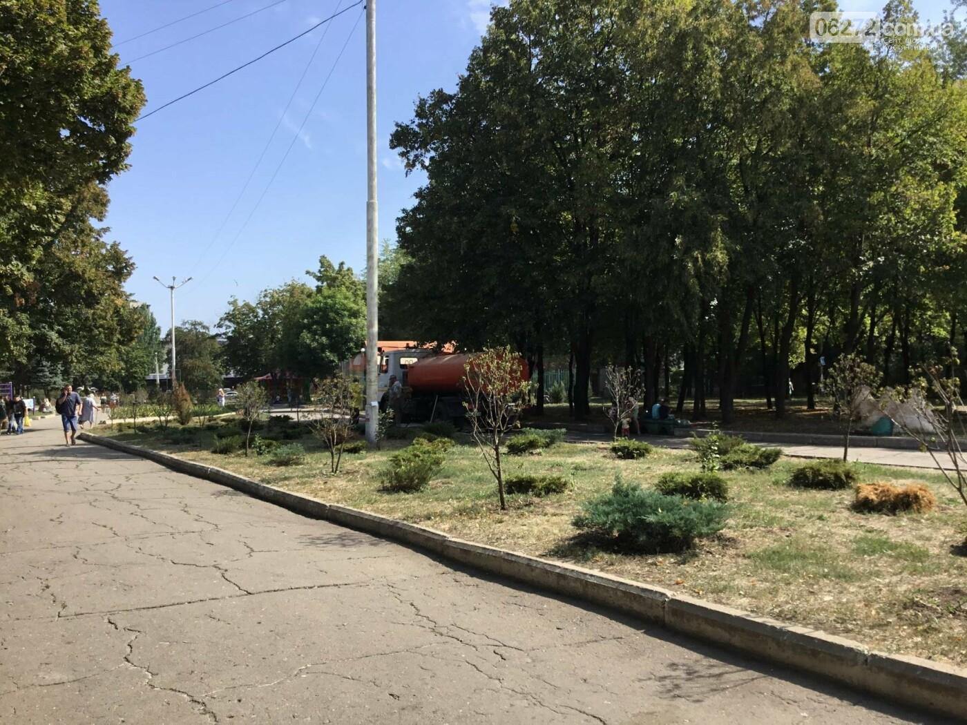 В Константиновском сквере спасали растения от жары, фото-1