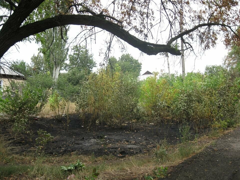 Біля Костянтинівського медичного коледжу вигоріла велика площа трави, фото-3