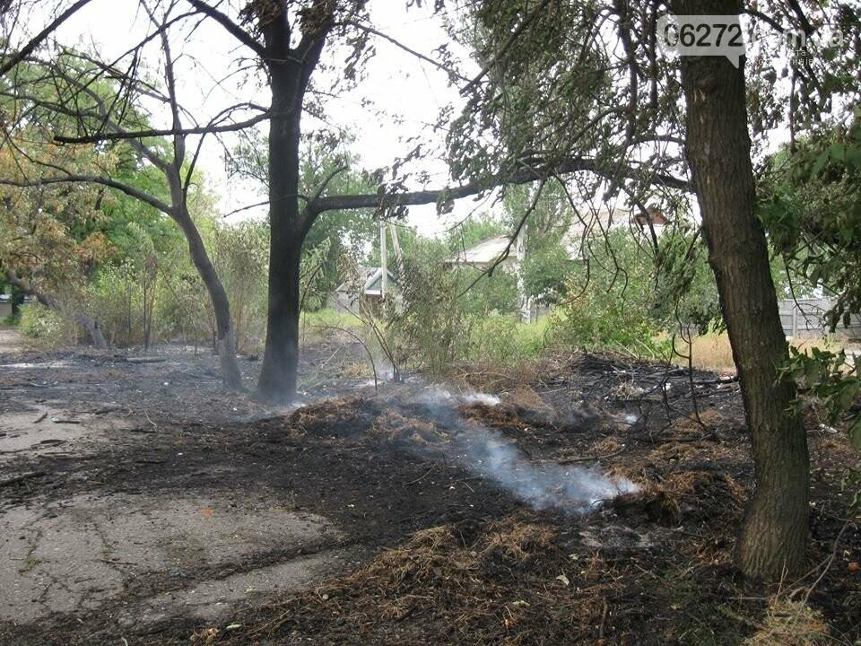 Біля Костянтинівського медичного коледжу вигоріла велика площа трави, фото-5