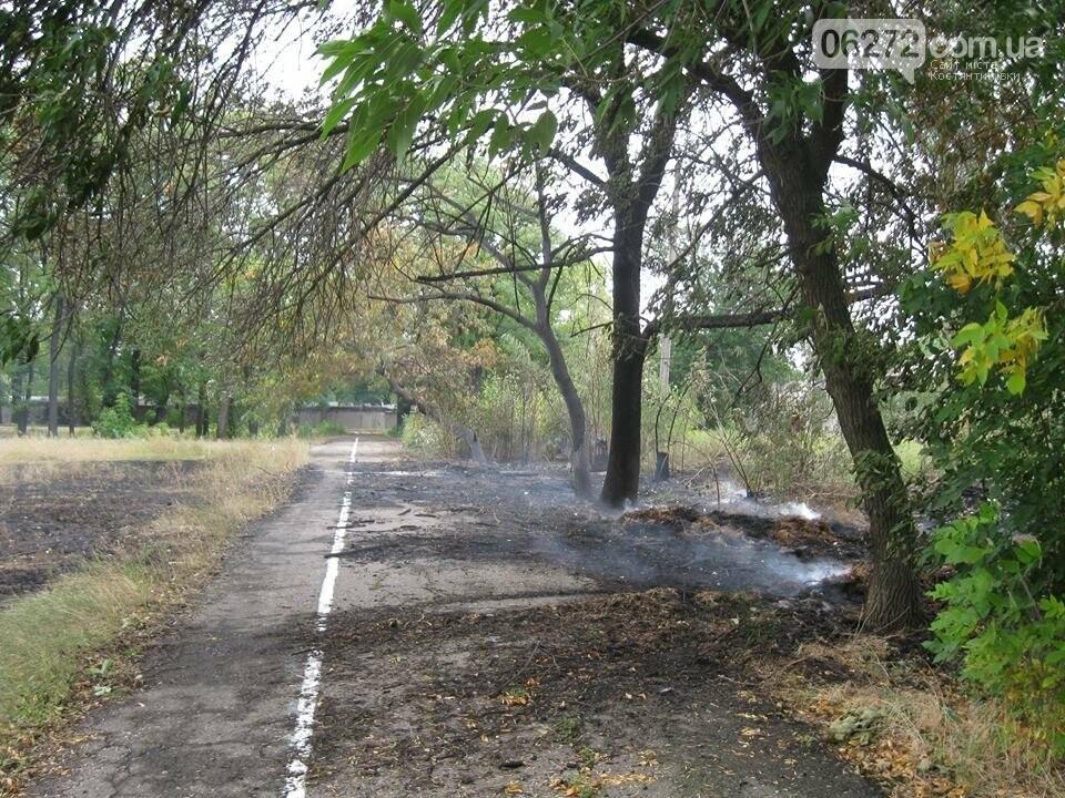 Біля Костянтинівського медичного коледжу вигоріла велика площа трави, фото-2