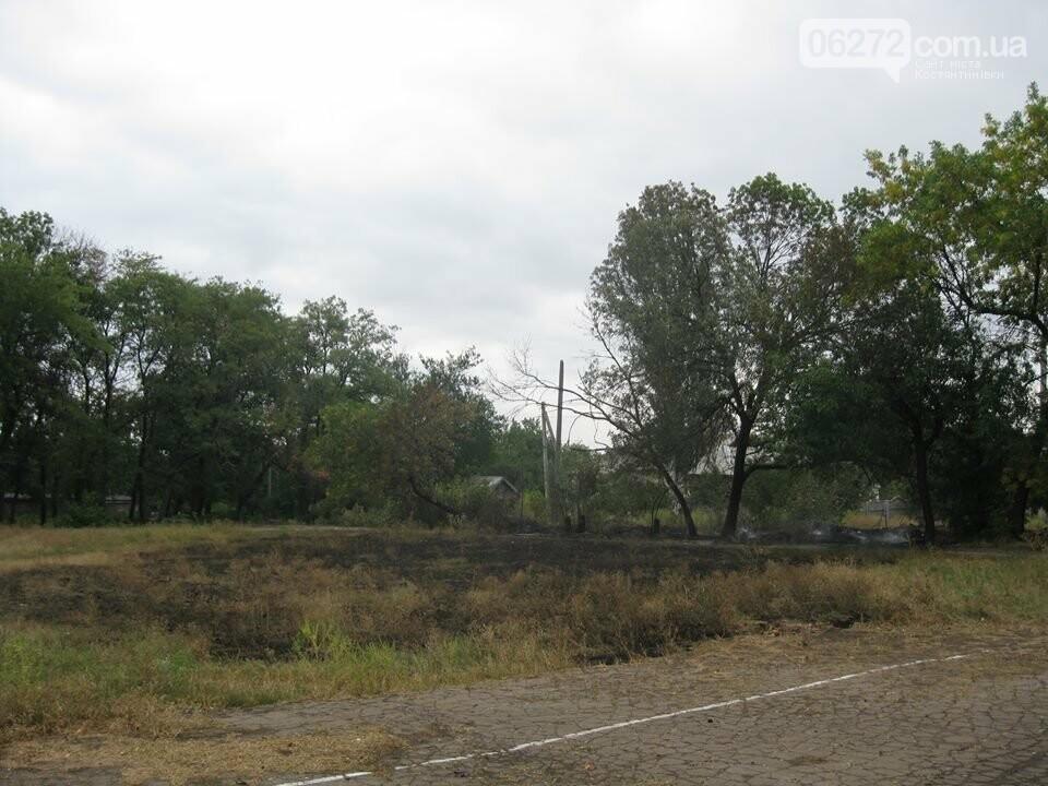 Біля Костянтинівського медичного коледжу вигоріла велика площа трави, фото-1