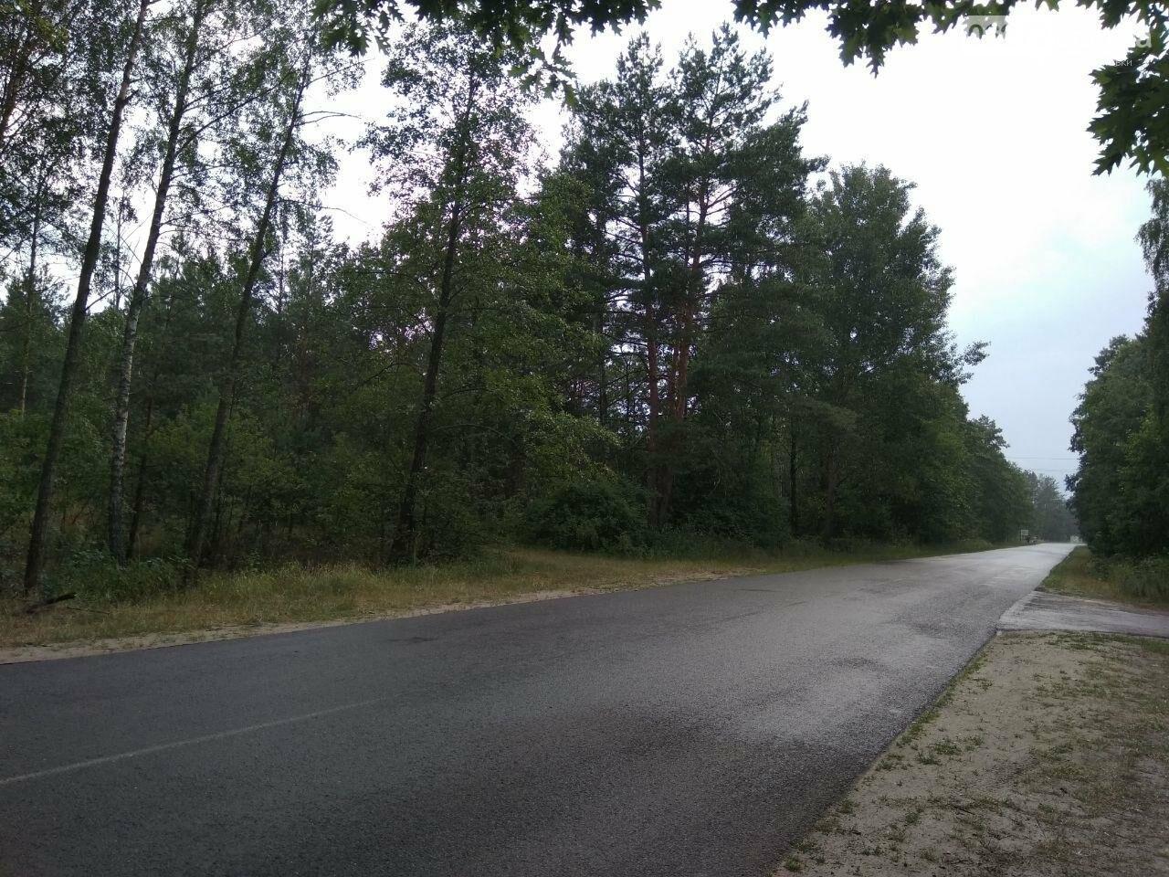 Автостопом по Украине: все пошло не по плану, фото-17