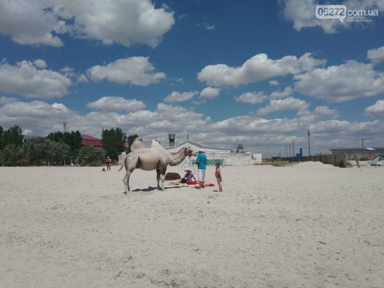 Автостопом по Украине: все пошло не по плану, фото-8