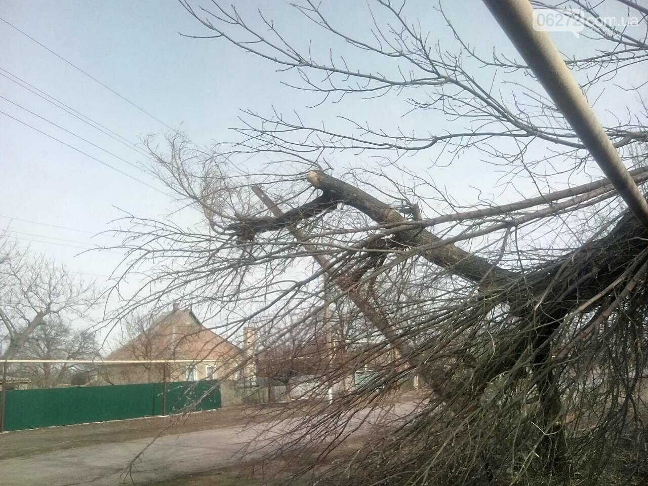 В Константиновском районе дерево упало на столб линии электропередач, фото-4