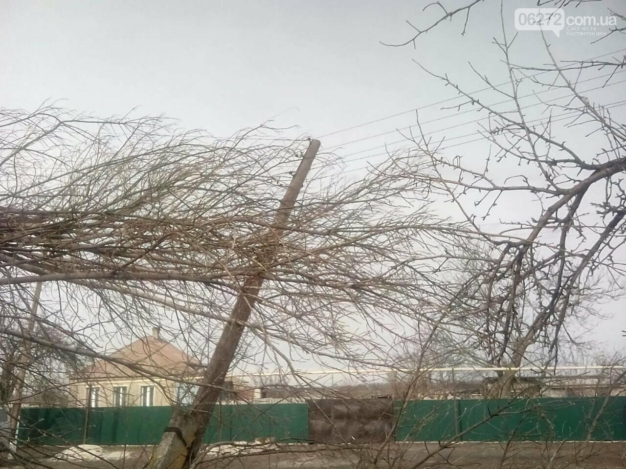 В Константиновском районе дерево упало на столб линии электропередач, фото-5