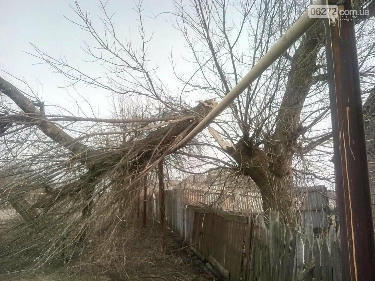 В Константиновском районе дерево упало на столб линии электропередач, фото-1