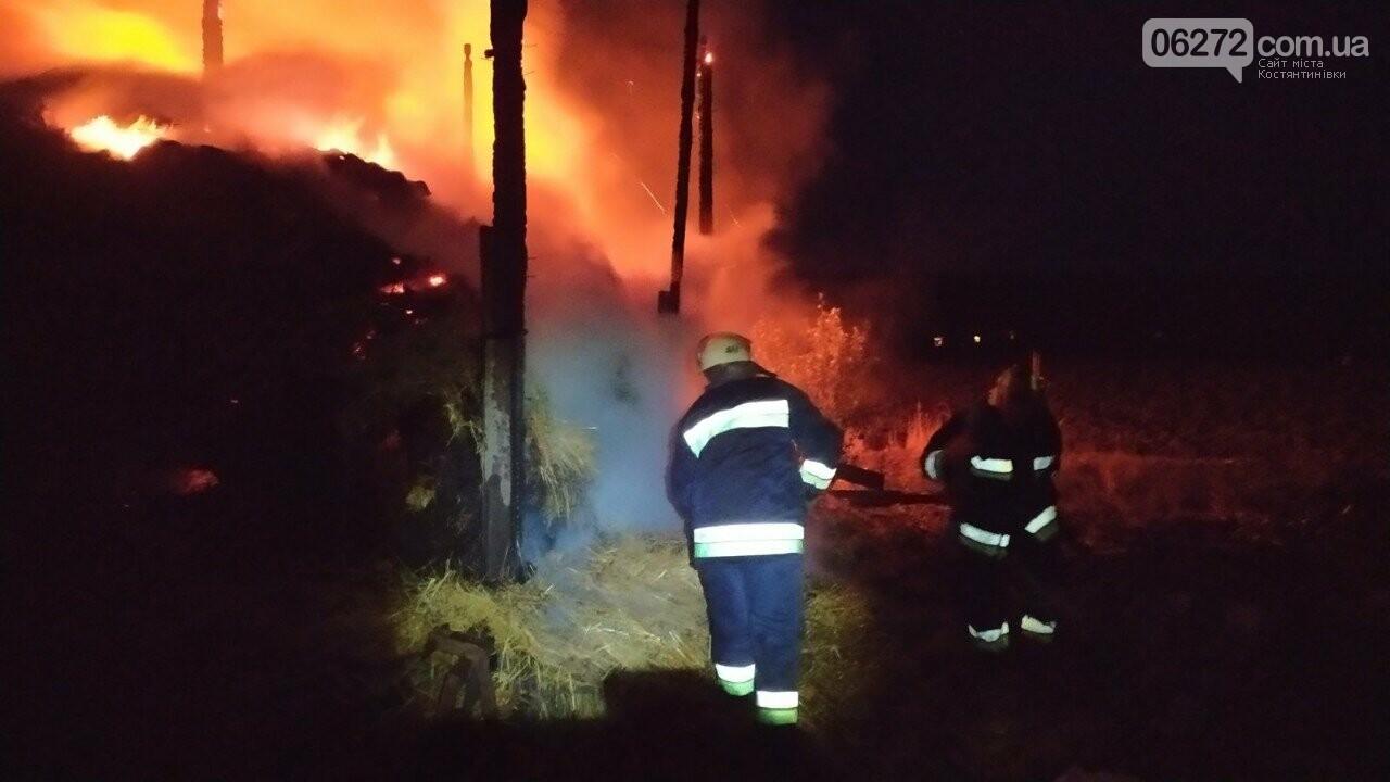 При пожежі в Костянтинівському районі згоріло 40 тонн сіна, фото-1