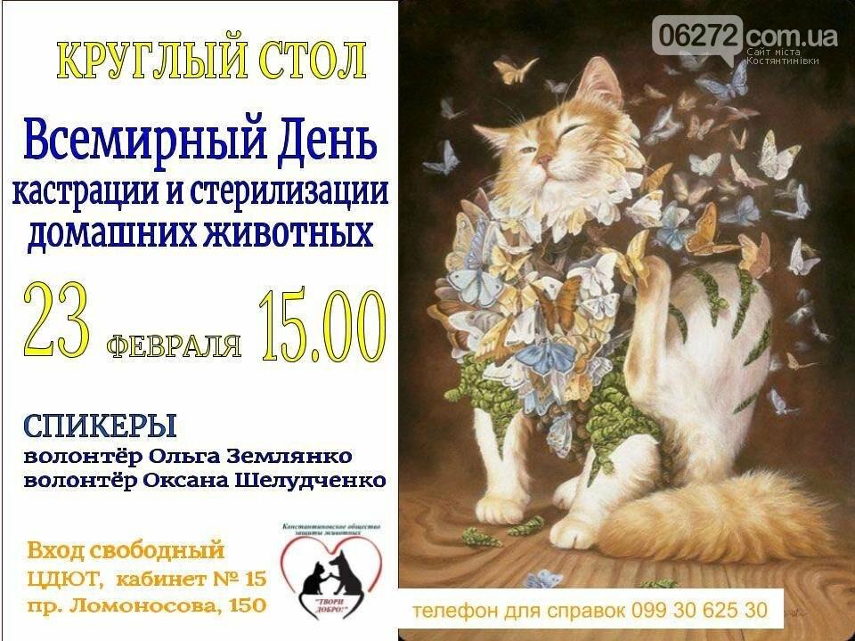 В Константиновке состоится круглый стол «Кастрация и стерилизация животных», фото-1