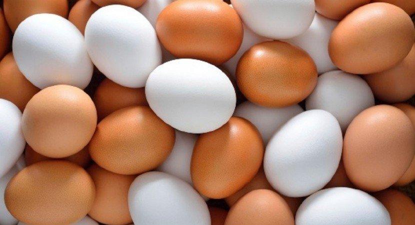 Польза или вред? Куриные яйца, фото-1