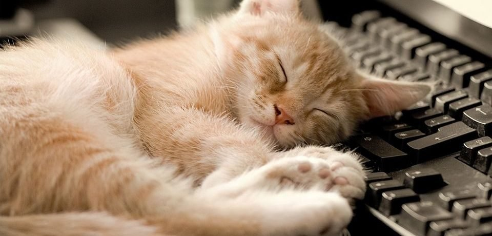 Мир снов. 8 советов для здорового сна, фото-1