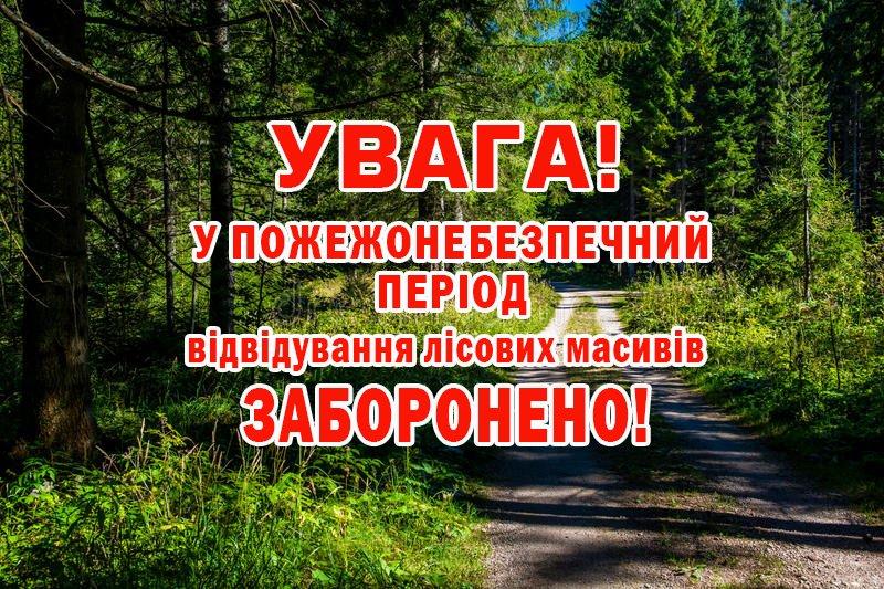 В Донецкой области введен запрет на посещение лесных массивов в период чрезвычайной пожарной опасности, фото-1