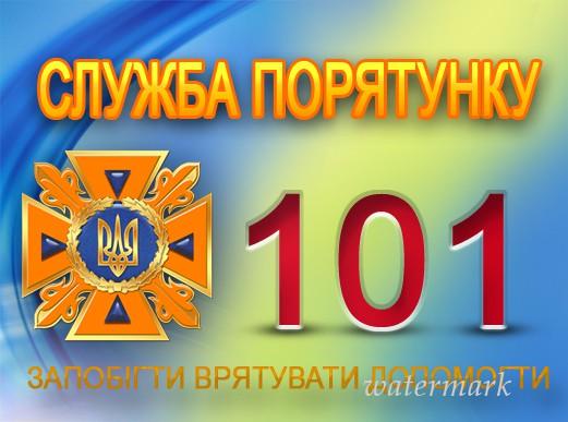 Константиновские спасатели сдали нормативы в Краматорске, фото-2