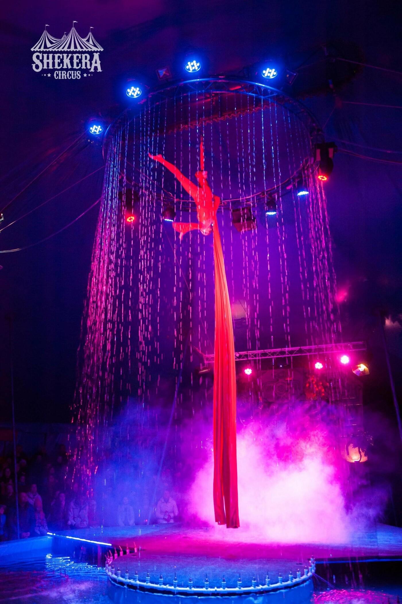 """Цирк  """"Shekera"""" впервые приедет с шоу-программой в  Константиновку , фото-6"""