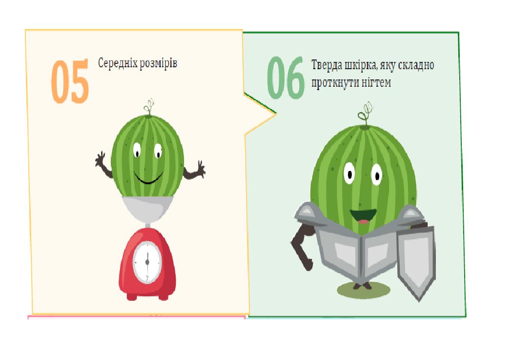 Как на прилавках  Константиновки правильно выбрать арбуз, фото-4