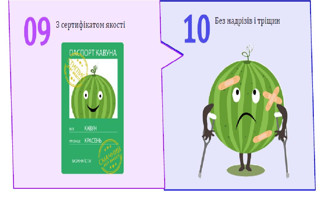 Как на прилавках  Константиновки правильно выбрать арбуз, фото-1