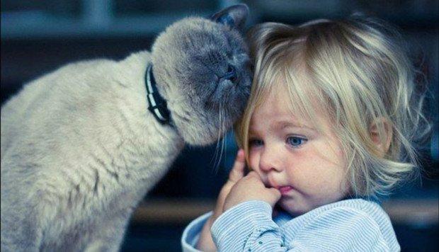 Котики і собачки можуть покращувати здоров'я. Уляна Супрун розказала про користь домашніх тварин, фото-2