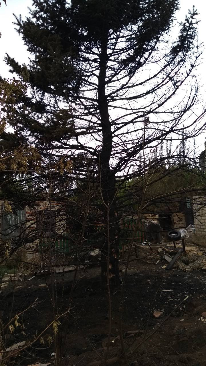 Дитячі пустощі з вогнем призвели до пожежі в Костянтинівці, фото-7