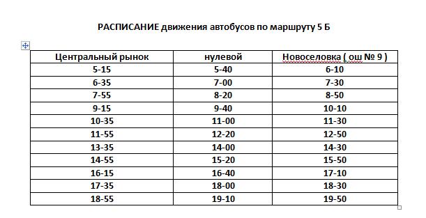 Расписание движения автобусов в Константиновке, фото-2