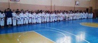 В Константиновке состоялся Кубок Донецкой области по каратэ, фото-1
