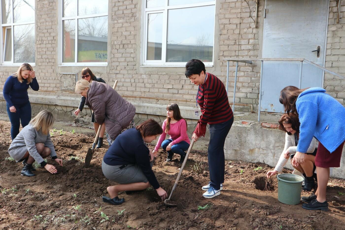 Костянтинівський центр зайнятості долучився до акції з висадки троянд, фото-1