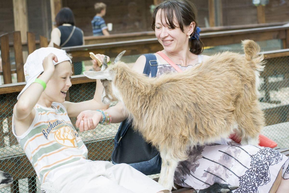 Чим небезпечні контактні зоопарки - Уляна Супрун, фото-1