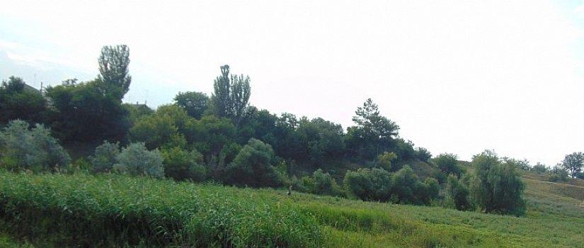 Популярні місця відпочинку на свіжому повітрі в Костянтинівці, фото-3