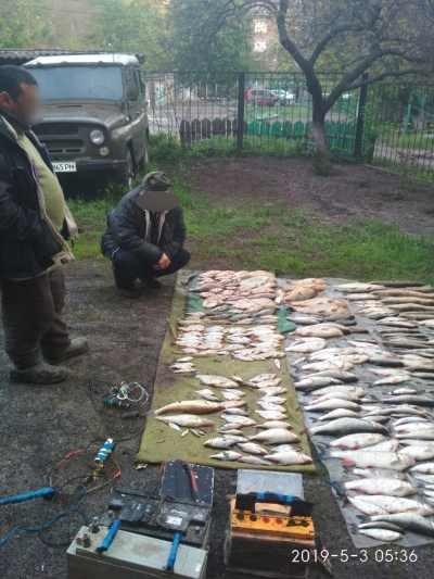 В Донецкой области задержали электроудочников, которые нанесли почти 36 тыс. грн. убытков, фото-1