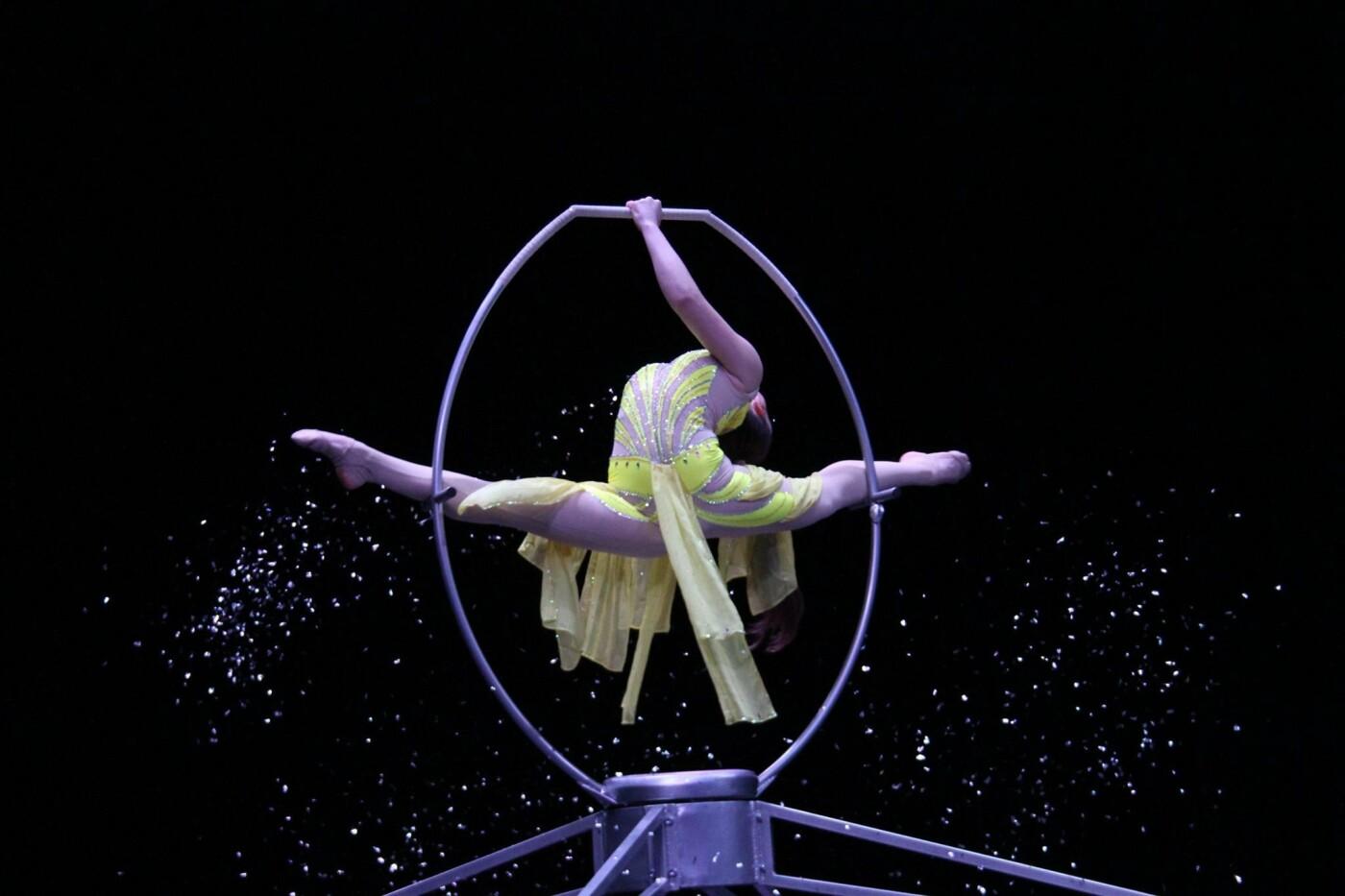 Студия «Каскад» из Константиновки стала победителем трех фестивалей циркового искусства, фото-4