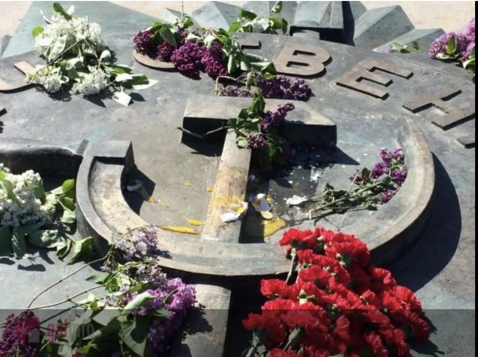 Драки, портрет со Сталиным и слезоточивый газ. Как прошло 9 мая в Украине, фото-8