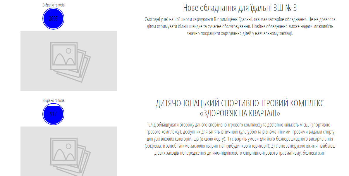 В Костянтинівці проведуть повторне голосування по двом проектам Бюджету участі, фото-1