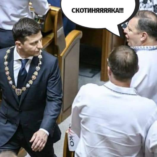 Инаугурация Владимира Зеленского. Мемы и фотожабы, фото-13