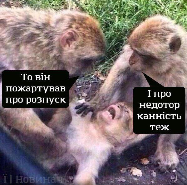 Инаугурация Владимира Зеленского. Мемы и фотожабы, фото-10