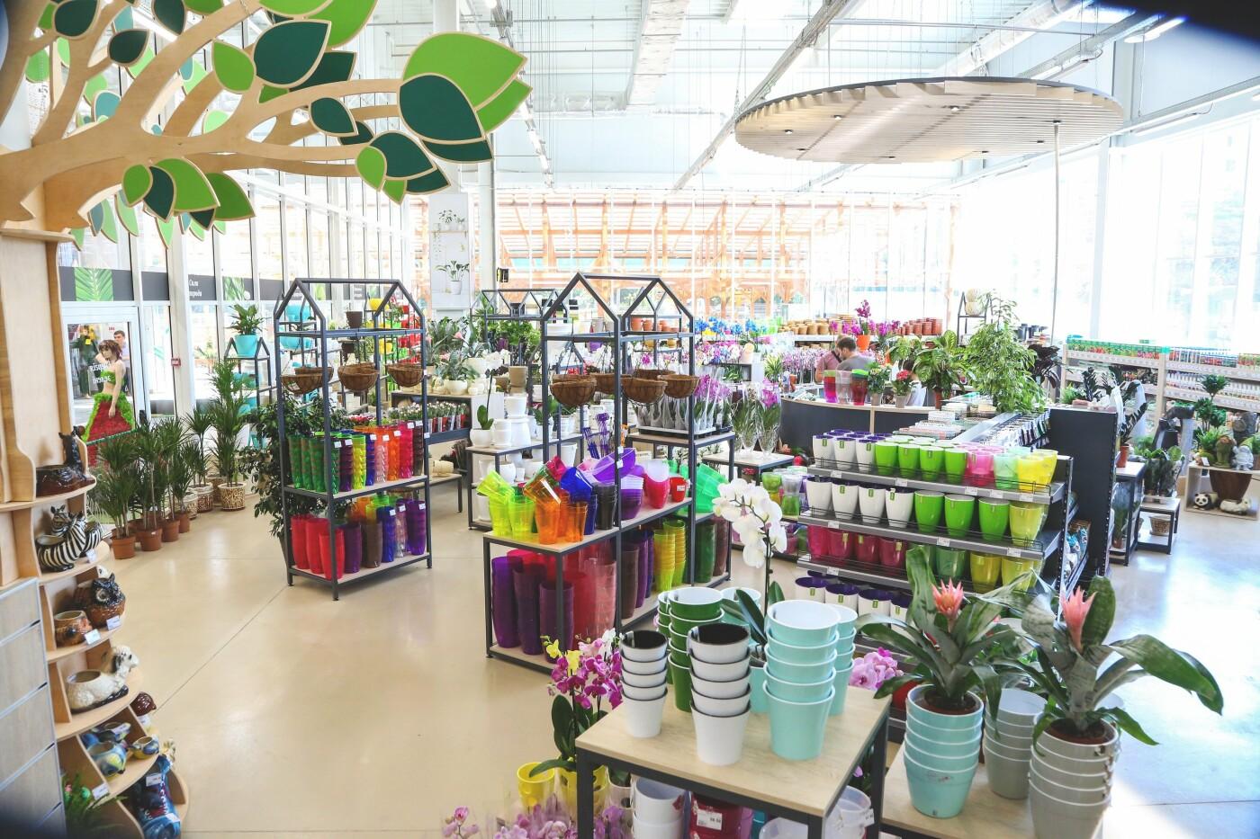 У Донецькій області відкривається сучасний торговий центр «Епіцентр», фото-3