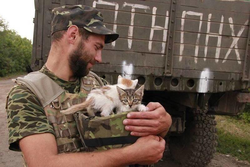 Військові та їх чотирьохлапі друзі. Котики ЗСУ і не тільки, фото-14