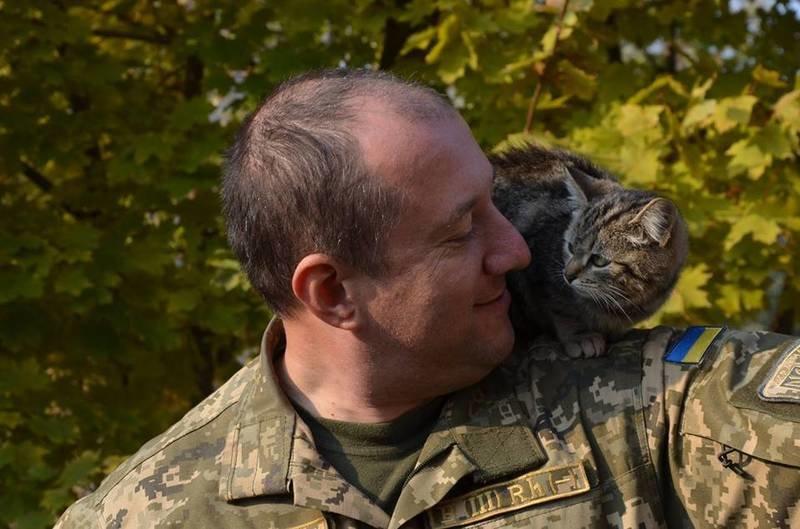 Військові та їх чотирьохлапі друзі. Котики ЗСУ і не тільки, фото-16