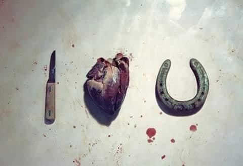 Сердечка з ковбаси і кохання. Смішні картинки про 14 лютого, фото-2