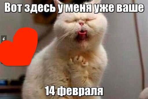 Сердечка з ковбаси і кохання. Смішні картинки про 14 лютого, фото-9