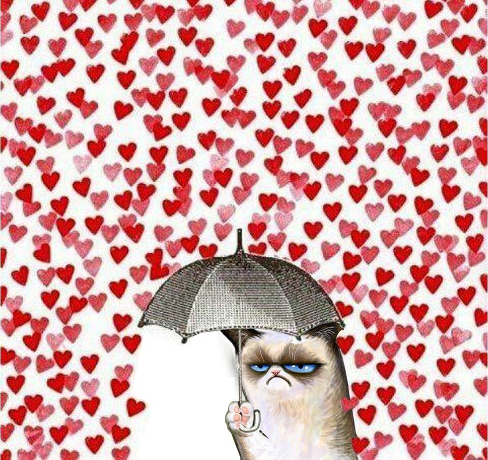 Сердечка з ковбаси і кохання. Смішні картинки про 14 лютого, фото-1